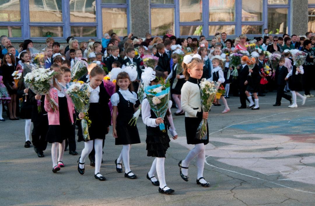 Кабмин выделил млрд на«Новую украинскую школу»