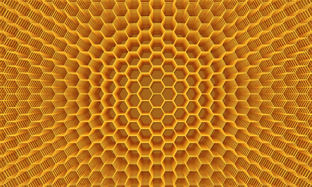 Кому Украина продает свой мед в 2018 году