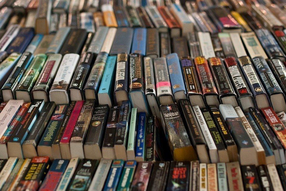 ВУкраинском государстве хотят ввести санкции заантиукраинскую литературу