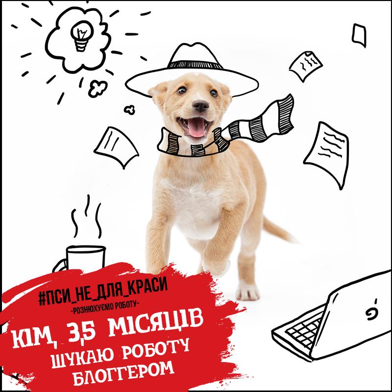 Проект #ПсиНеДляКраси для Бородянского приюта. Иллюстратор: Андрей Волошин