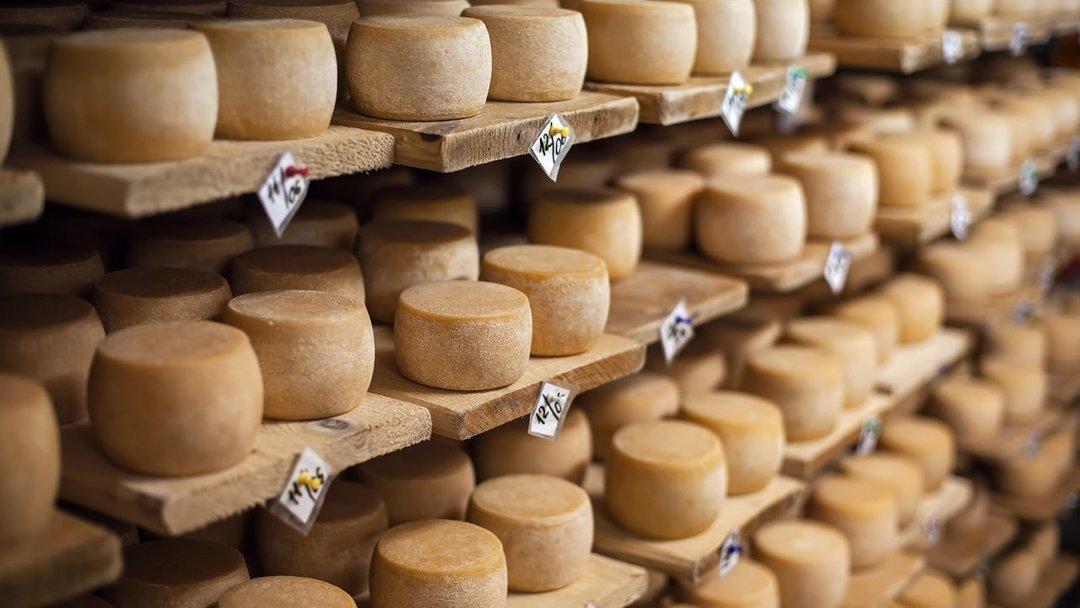 Украина стала больше импортировать сыров — данные за 2018 год