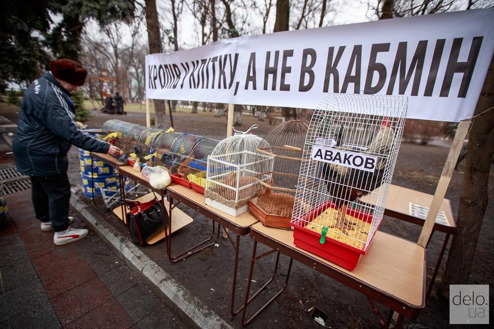 Митинг под Верховной Радой с требованием отправить Яценюка в отставку. Фото: Татьяна Довгань