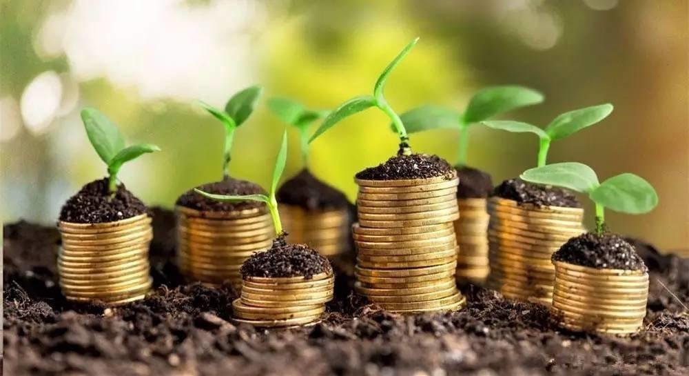 Рада приняла закон опривлечении иностранных инвестиций