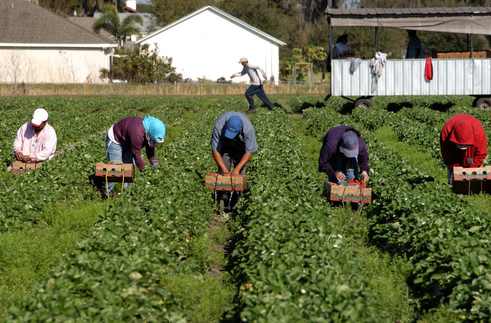В руководстве шокировали количеством жителей, вынужденных работать заграницей
